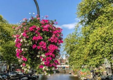 De Leukste parken van Amsterdam